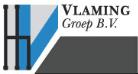 logo_Vlaming